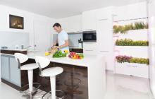 کشت میوه و سبزی در آشپزخانه